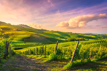 Photo on textile frame Vineyard Langhe vineyards view, Barolo and La Morra, Piedmont, Italy Europe.