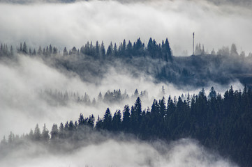 Foto op Textielframe Ochtendstond met mist The view from the heights of the mountains and forests covered by fog
