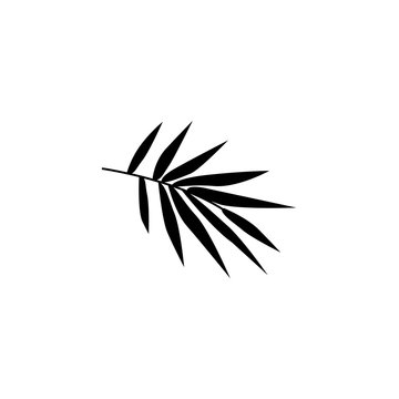 A branch with bamboo leaves black and white illustration. Sketch. Tropical plant of Asian countries, China, Japan, Korea. Icon vector