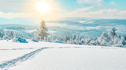 Photo sur Aluminium Bleu clair Stunning panorama of snowy landscape in winter in Black Forest - winter wonderland