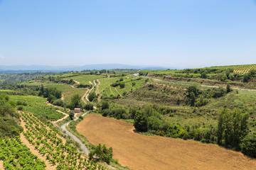 Elvillar, Spain. Summer rural landscape