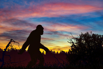 Bigfoot really exists