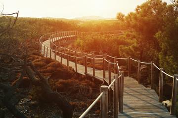 Foto auf AluDibond Braun wooden walkway bridge in dunes by the ocean in Portugal