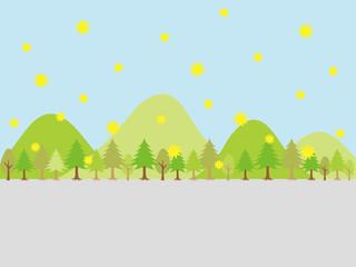 花粉の舞う杉林