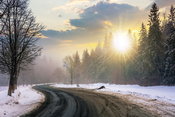 country road through forest at sunset. misty winter weather in evening light. snow on the roadside. cloudy sky