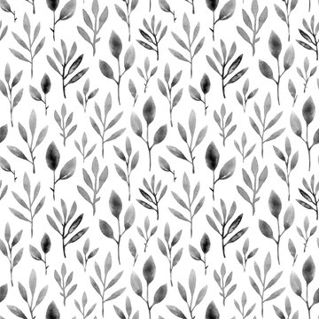 watercolor gray leaves and herbs. hand painting seamless pattern on a white background