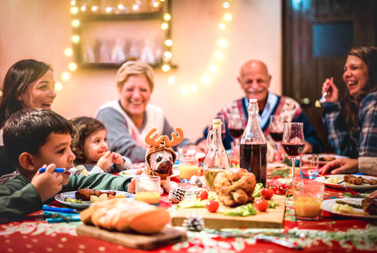 Multi generation big family having fun at christmas supper party - Winter holiday x mas concept with grand parent and children eating together at home dinner - Focus on dog puppy toy with reindeer hat