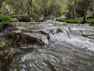 Tuinposter Bos rivier The Aguilón or Navahondilla stream on the way to the Purgatorio waterfall in the Sierra de Guadarrama. Lozoya Valley Madrid's community.