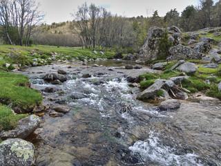 Spoed Fotobehang Bos rivier The Aguilón or Navahondilla stream on the way to the Purgatorio waterfall in the Sierra de Guadarrama. Lozoya Valley Madrid's community.