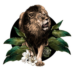 full-length lion walking on background composition of tropical plant leaves and flowers, sketch vector graphics color illustration on white background