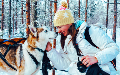 Woman with Husky family dog sled in winter Rovaniemi of Finland of Lapland. Person and Dogsled ride in Norway. Animal Sledding on Finnish farm, Christmas. Sleigh. Safari on sledge and Alaska landscape