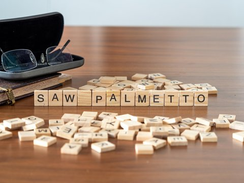 saw palmetto the word or concept represented by wooden letter tiles