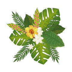 cute flowers with leafs isolated icon vector illustration design