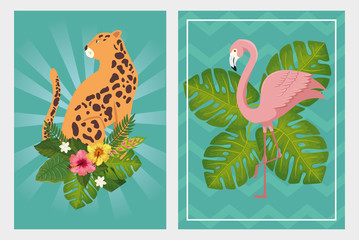 set scenes of leopard with flamingo pink vector illustration design