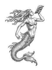 Hand drawn illustration in the engraving style, sea mermaid with a shell.