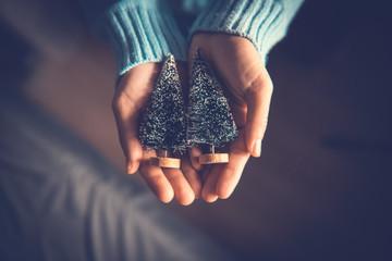 Fototapete - Close up woman hands holding Christmas tree, Christmas decorative ornament concept