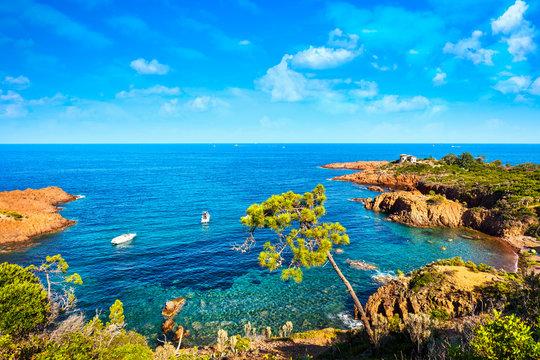 Esterel, tree, rocks beach coast and sea. Cote Azur, Provence, France.