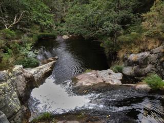 Foto auf Leinwand Forest river Road to the Cascada del Cioyo in Asturias. Spain