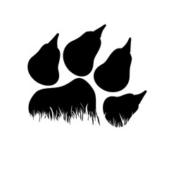 Vector silhouette of dog's paw in the grass on white background. Symbol of animal, pet, puppy, park, garden, nature.