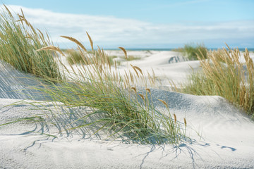 Photo sur Plexiglas La Mer du Nord Breiter Strand an der Nordsee