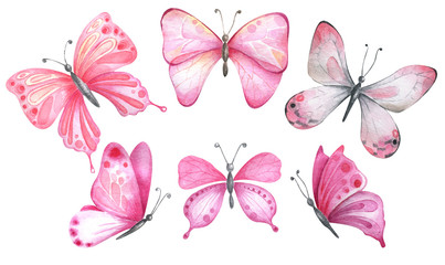 Watercolor butterflies in pink colors.