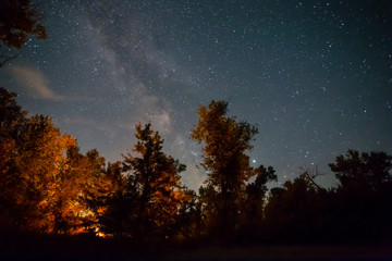 Foto auf Acrylglas Schwarz night camping scene, touristic camp fire in a night forest under starry sky with milky way