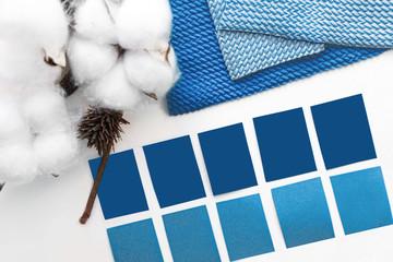 designer desktop. Color sample guide blue.