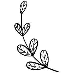 Vector black contour of a Christmas mistletoe branch in a minimalistic style. Christmas winter illustration for adults, children`s coloring.