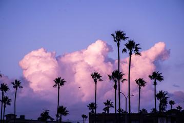 Newport Beach At Sunset
