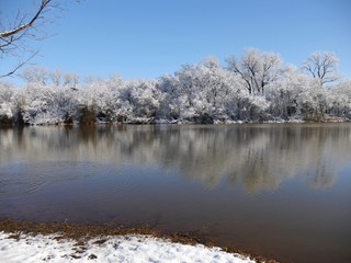 Beautiful winter scene by the pond, with the snow-covered trees reflected in the water
