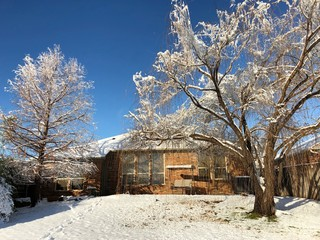 Back view of a house with the ground and the trees all covered in snow