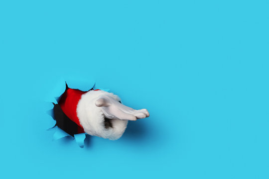 Santa Claus hand presenting your christmas text or product over light blue background