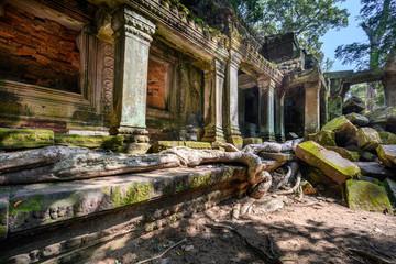 Ta Prohm temple at Angkor Wat complex, Siem Reap, Cambodia