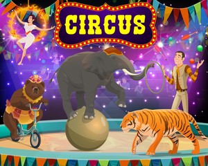 Circus show with trained animals, tamer. Vector arena in big top circus tiger and elephant on ball, bear riding unicycle and gymnast in burning circle. Performance show, arena in spotlights, flags