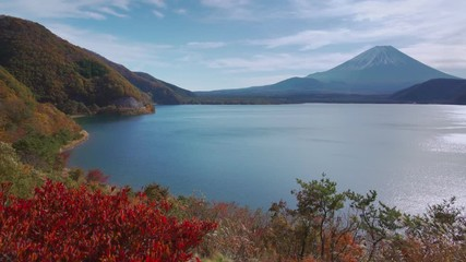 Wall Mural - Mountain fuji with tree foreground, Motosuko Lake, Japan