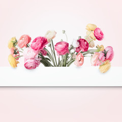 Beautiful flowers layout with white frame on pastel pink background. Creative concept. Copy space for your design. Pretty colorful buttercups. Greeting card for womans holidays