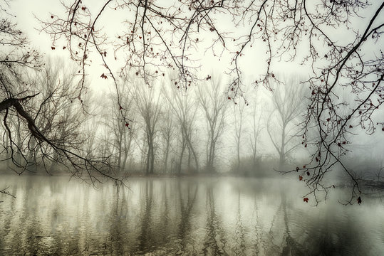 Reflections in mysterious lake