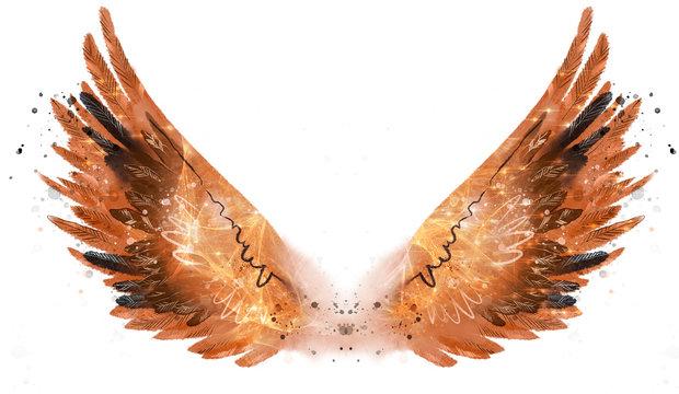 Beautiful orange fiery pnoenix watercolor wings