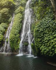 Wall Murals Waterfalls Beautiful waterfall in Bali in its ecosystem in green