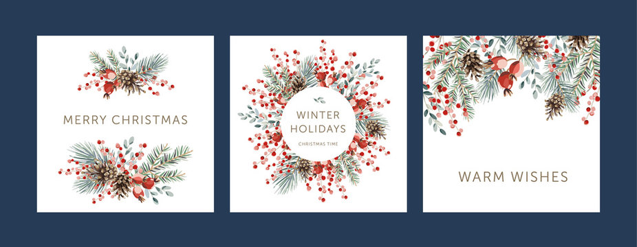 Nature design square greeting cards template, circle frame, text Winter Holidays, Warm Wishes, Merry Christmas, white background. Green pine, fir twigs, cones, red berries. Vector xmas illustration