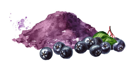 Organic aronia powder and fresh Aronia berries or black chokeberry with green leaves. Watercolor hand drawn illustration isolated on white background