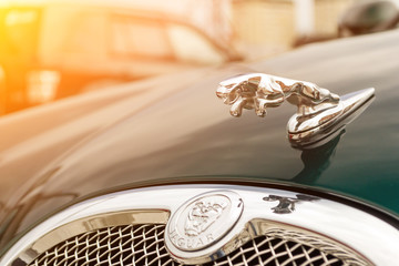 Novosibirsk, Russia - 06.28.2018: The chrome-plated emblem in the form of an animal jaguar on a hood brightly green Jaguar S-type 2007