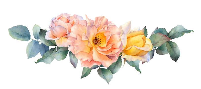 Hand drawn watercolor arrangement with picturesque tea rose flowers, rosebud and leaves isolated on a white background. Floral botanical illustration for wedding invitations, greeting cards, patterns