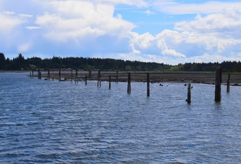 old wooden pier remenants at Fanny Bay, Vancouver Island BC Canada