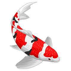 Red and gold koi fish design elements