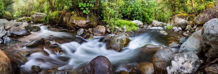 Savegre River (Rio Savegre), San Gerardo de Dota, San Jose Province, Costa Rica, Central America