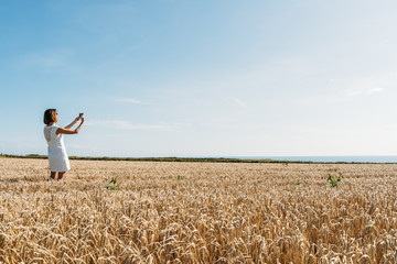 Woman is taking a selfie in the golden grass field against of sun.