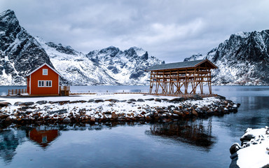 Traditional typical red rorbu house and wooden construction for drying codfish in the fishing village in Lofoten islands, Norway. Reflection in water, mountain in the background, blue hour.