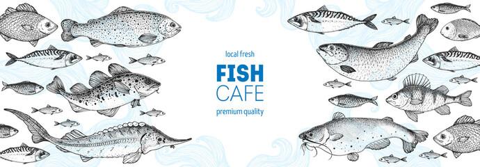 Fish sketch collection. Hand drawn vector illustration. Seafood frame. Food menu illustration. Hand drawn sturgeon, tuna, cod fish, herring, rainbow trout, mackerel, salmon, perch. Engraved style