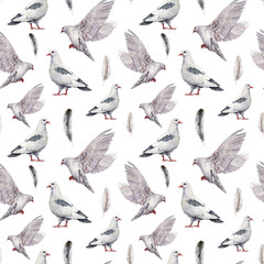 Watercolor seamless pattern with a white dove. Hand painted pigeon bird isolated on white background. Easter illustration for design, print, fabric or background. Spring bird.